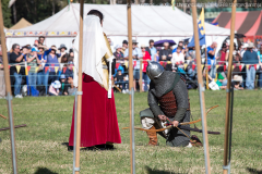 2016-Abbey-Medieval-Festival14