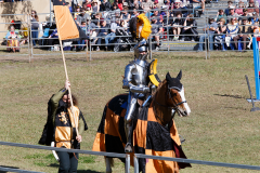 2016-Abbey-Medieval-Festival27